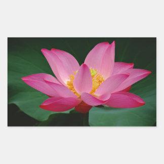 Blooming Lily Rectangular Sticker