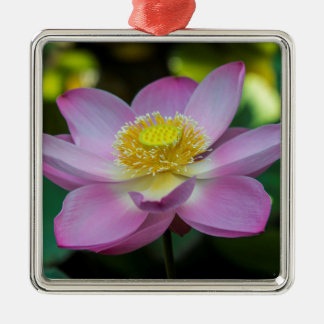 Blooming lotus flower, Indonesia Christmas Ornament
