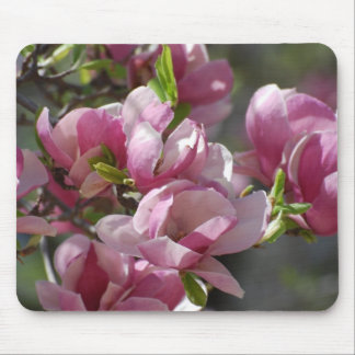 Blooming Magnolia Mouse Pad