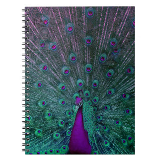 BLOOMING PEACOCK NOTEBOOK