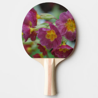 Blooming Primula Flowers Ping-Pong Paddle