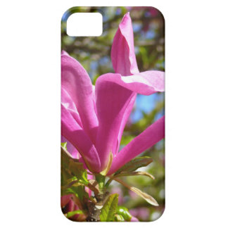 Blooming Purple Magnolia iPhone 5 Cover
