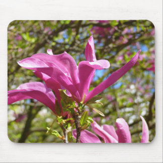 Blooming Purple Magnolia Mouse Mat
