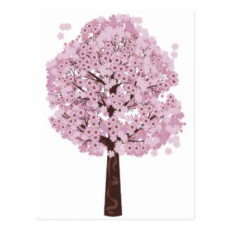 Blooming Sakura Tree Postcard