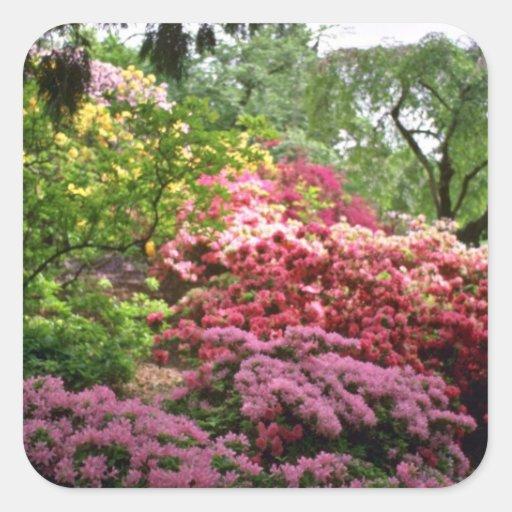Blooming Shrubs In Park flowers Sticker