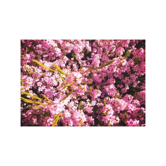Blooming Spring Flowers Canvas Print