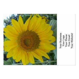 Blooming Sunflower Pack Of Chubby Business Cards