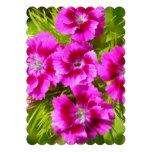 Blooming Sweet William Flowers Invitation