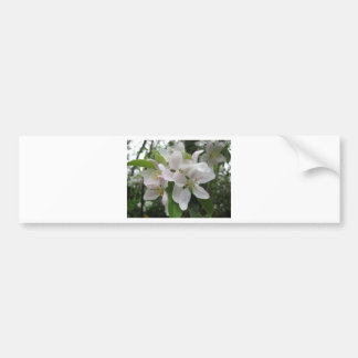 Blossom Boquet Bumper Sticker