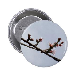Blossom Button
