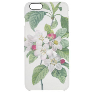 Blossom, from 'Les Choix des Plus Belles Clear iPhone 6 Plus Case