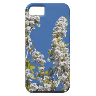 Blossom iPhone 5 Case