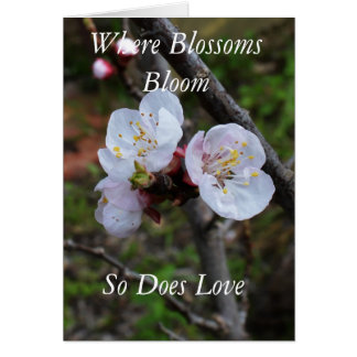 Blossom Love Blooms, Small Greeting Card