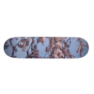 Blossom mf 21.3 cm mini skateboard deck