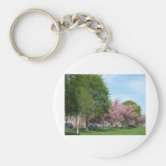 Blossom on Denholm Green Basic Round Button Key Ring