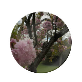 Blossom Plate