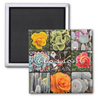 """Blossom"" quote colorful cacti & rose floral photo Magnet"
