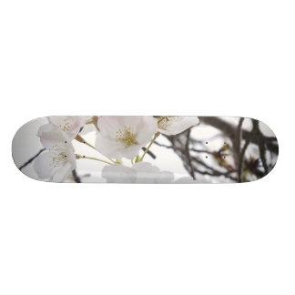 Blossom Skateboards