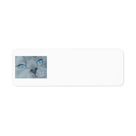 Blossom the Ragdoll Cat Return Address Label