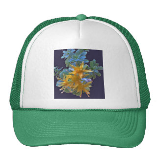 Blossoming Aeonium Cap