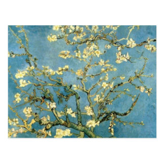 Blossoming Almond Tree by Van Gogh Postcard