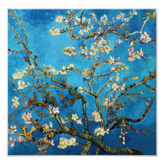 Blossoming Almond Tree Van Gogh Fine Art Poster