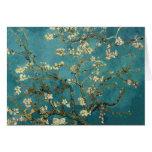 Blossoming Almond Tree - Van Gogh Greeting Card