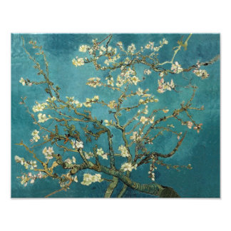 Blossoming Almond Tree - Van Gogh Photo Print