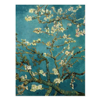 Blossoming Almond Tree - Van Gogh Postcard