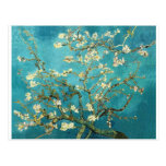 Blossoming Almond Tree - Vincent Van Gogh Postcard