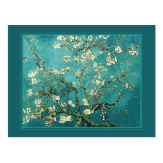 Blossoming Almond Tree Vintage Floral Van Gogh Postcard