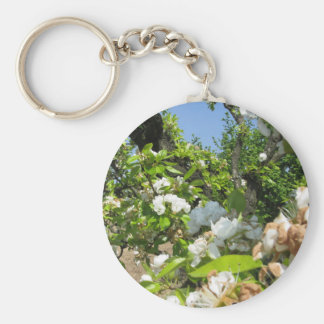 Blossoming branches of a pear tree in spring basic round button key ring