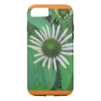 Blossoming Daisy Apple iPhone Case