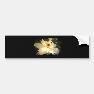 Blossoming Magnolia Bumper Sticker