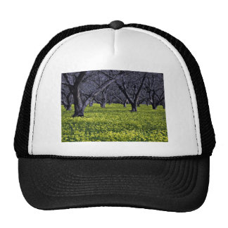Blossoming plants hat
