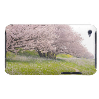 Blossoming Yoshino cherry trees in a field of iPod Touch Case