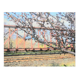 Blossoms and Train Car Postcard