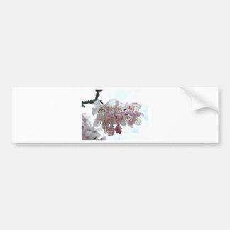 Blossoms Bumper Stickers