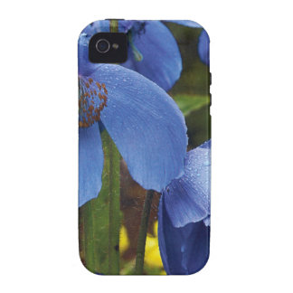 blossoms flora flowers petals garden vines vibe iPhone 4 covers