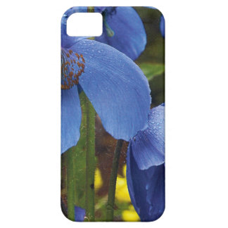 blossoms flora flowers petals garden vines iPhone 5 case