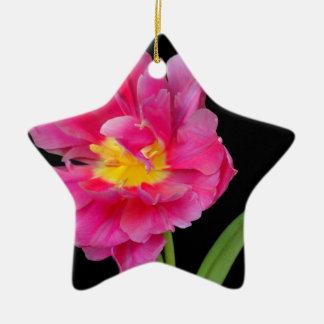 Blossoms Flowers Party Shower Congratulations Love Ceramic Star Decoration