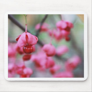 Blossoms Mousepads