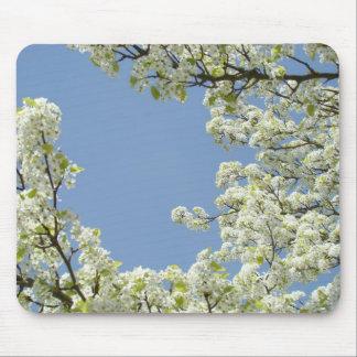 BLOSSOMS MOUSEPADS Tree Blossom Mousepad Blue Sky
