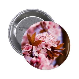 Blossoms Sakura 6 Cm Round Badge