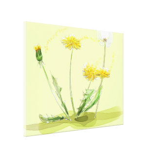 Blow Away Dandelion Stretched Canvas Print