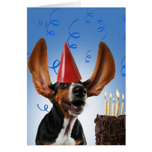 Blow Dog Greeting Cards