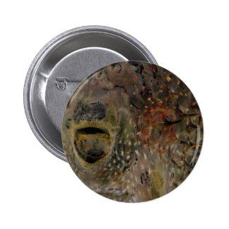 Blowfish Incident 6 Cm Round Badge