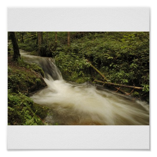 blows spring water in the Black Forest Poster