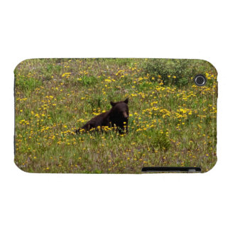 BLST Black Bear Snack Time iPhone 3 Cover