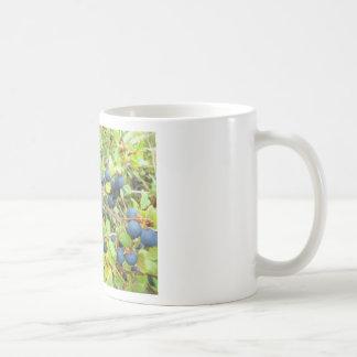 blu berries mugs